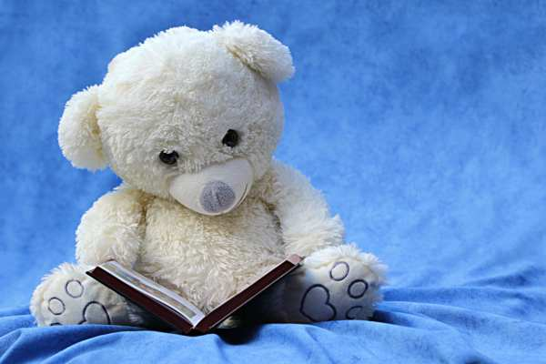 Teddy Day Status For Facebook in Hindi